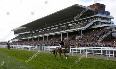 Kauto Star and Laura Collett parade in front of the stands before the first race