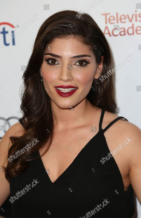 Editorial image of The Television Academy's 23rd Annual Hall of Fame, Los Angeles, America - 11 Mar 2014