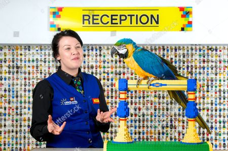 Staff member Amber Dixon talks with blue and good macaw Charlie