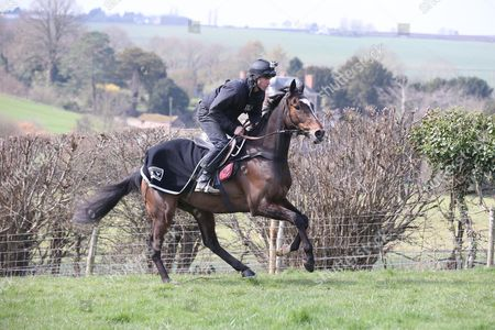 Monbeg Dude ridden by his trainer Michael Scudamore on the gallops with owners Mike Tindall & James simpson-Daniel