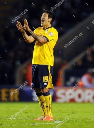Stock Image of Leonardo Araujo Ulloa of Brighton & Hove Albion