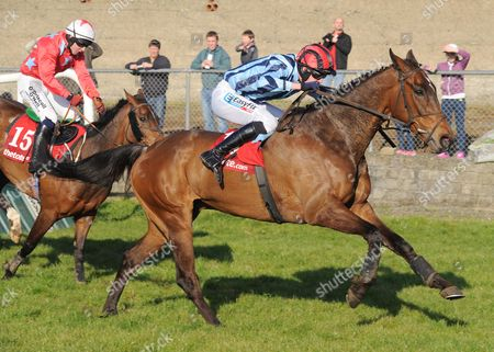 14-4-14 TRAMORE TRY IT SOMETIME and Andrew McNamara beat Udo's Choice for trainer Francis Flood. HEALY RACING