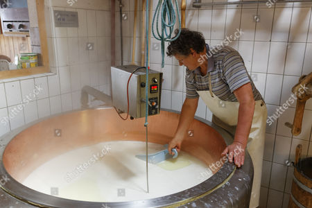 Cheese production in an Alpine dairy, Alpe Obere Falz alp near Schetteregg, Egg, Bregenz Forest, Vorarlberg, Austria