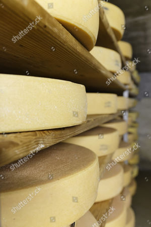 Stock Photo of Maturation cellar for Alpine cheese, Alpine dairy, Alpe Obere Falz alp near Schetteregg, Egg, Bregenz Forest, Vorarlberg, Austria