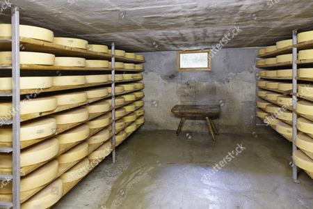 Maturation cellar for Alpine cheese, Alpine dairy, Alpe Obere Falz alp near Schetteregg, Egg, Bregenz Forest, Vorarlberg, Austria