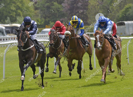 (L) Wild Tobacco (sean Levy) wins The Betfred Monumental Scoop6/British Stallion Studs EBF Maiden Stakes, from (R) King Crimson (Andrea Atzeni) at Lingfield Park Racecourse