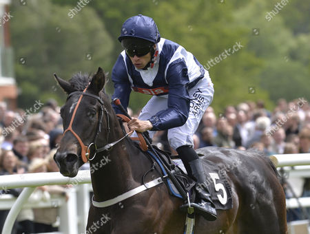 Wild Tobacco (Sean Levy) wins The Betfred Monumental Scoop6/British Stallion Studs EBF Maiden Stakes, at Lingfield Park Racecourse