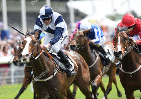 (L) Patience Alexander (Jim Crowley) wins The Langleys Solicitors LLP EBF Marygate Stakes from (R) Tiggy Wiggy (Sean Levy) @ York Racecourse. Pic: Hugh Routledge. 16.5.14