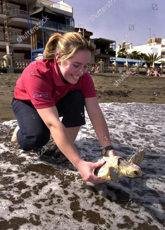 Editorial picture of SHELLY THE LOGGERHEAD TURTLE IN THE CANARY ISLANDS - MAR 2002