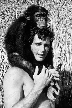 Tarzans Stockfoton Redaktionella Bilder Och Stockbilder