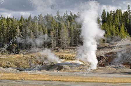 Black Growler Steam Vent, Porcelain Basin, Norris Geyser Basin, Yellowstone National Park, Wyoming, USA