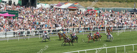SPRING BIRD Ridden by Paul Quinn (Green & Gold) wins at Newcastle on Ladies day in front of compasity crowd