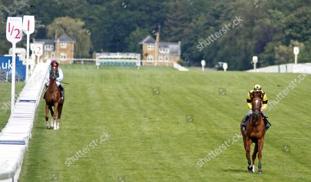 REDKIRK (Seb Sanders) canters to the start before winning The Mitie Events & Leisure Handicap Ascot