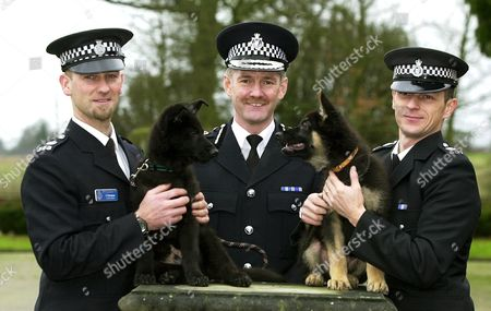 New puppies Merlin (L) and Oscar will join the force's general purpose dog team when they have finished training by handlers (L - R) PC Steve Ashman, PC Jason Mewman(right) and the Chief Constable Andy Hayman (centre)