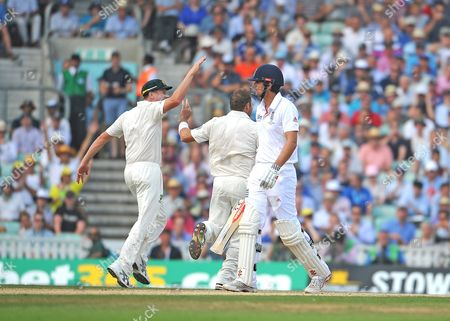 Stock Photo of Alistair Cooke Out C Haddin B Harris Fifth Investec Ashes Test Match At The Oval Day 3 Solo Syndication.