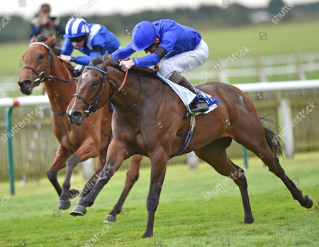 (R) Lucida (Kevin Manning) wins The Shadwell Rockfel Stakes from (L) Fadhayyil (Paul Hanagan) @ Newmarket Racecourse. Pic: Hugh Routledge. 26.9.14