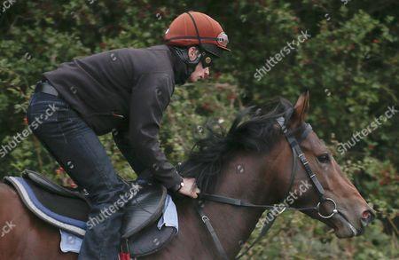 THE WOW SIGNAL-JOCKEY IAN BRENNAN John Qinn Yard Visit Malton Gallops