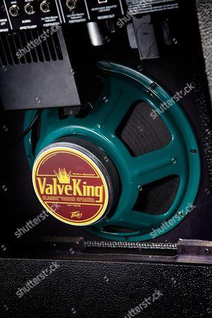 Detail Of The Loudspeaker On A Peavey Valveking 20-watt Combo Amp