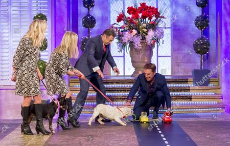 Anna Webb and Jo Good with Alan Titchmarsh and Brian Conley