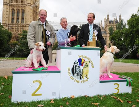 Westminster Dog Of The Year In Victoria Tower Gardens Outside The House Of Lords. Mps Bring Their Dogs To Compete For Westminster Dog Of The Year Held By The Dog Trust. Pictured: (l-r) Simon Reevell Conservative Mp For Dewsbury With His Dog Harry Who Went On To Place Second In The Competition Alan Duncan Conservative Mp For Rutland And Merton With His Dog Noodle. Noodle Went On To Win The Competition. David Burrowes Conservative Mp For Enfield Southgate And His Dog Cholmeley Who Went On To Place Third In The Competition.