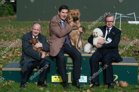 Laurence Robertson with Sausage, Rob Flello with Diesel and Michael Gove with Snowy