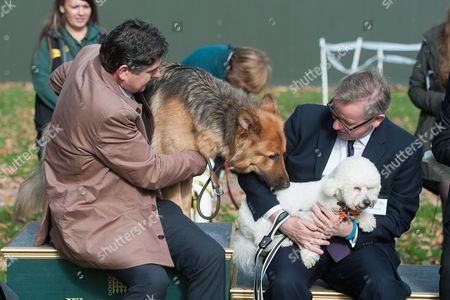 Rob Flello with Diesel and Michael Gove with Snowy