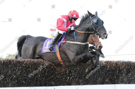WEXFORD BALLINARD BILLY and Jonathan Burke win the Casey Bros Supporting Their Local Racecourse Beginners Chase. HEALY RACING