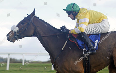 CAROLE'S DESTRIER (Michael Byrne) wins The Bathwick Tyres Novices Chase Exeter