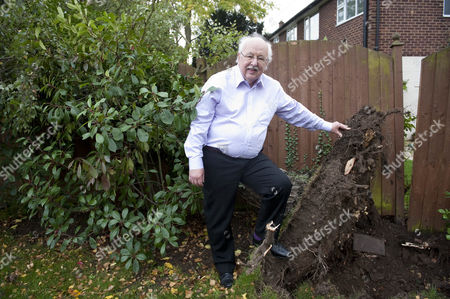 Weather Man Michael Fish In His Garden With His Blown Down Silver Birch Tree.