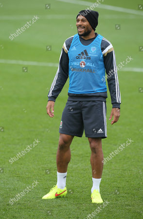 Wales' Danny Gabbidon during training session ahead of their UEFA European Championship Qualifier match against Belgium