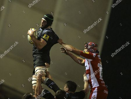 Dom Barrow of Newcastle Falcons beats Tom Palmer of Gloucester Rugby to the ball in the line out