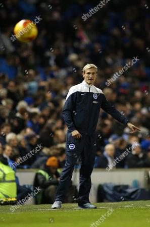Brighton & Hove Albion Manager Sami Hyypia .