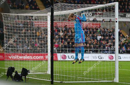 Swansea City goalkeeper Gerhard Tremmel hangs from the crossbar