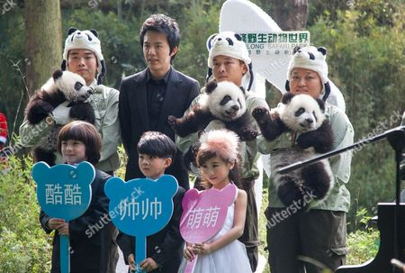 The panda triplets, pianist Li Yundi and other guests