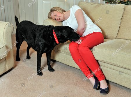 Editorial photo of Diabetic Alice Halstead 22 At Her Home Near Skipton North Yorkshire With Her Medical Detection Dog 'holly' 3 Who Can Sense When Alice's Blood Sugar Levels Are Down And Licks Her Hand And Brings Medication As A Result.