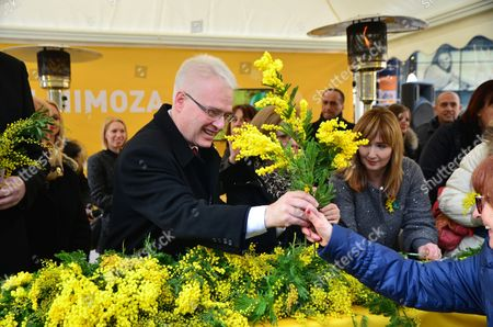 President of the Republic, Ivo Josipovic joined in the celebration of the National Day Against Cervical Cancer known as 'Mimosa Day' at Flower Square (Petar Preradovic Square)