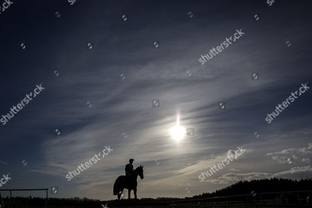 EXETER:. Flabello and Conor O' Farrell head out to the start of the 13.50; Division II of The Cheltenham Preview Evening 3rd March Maiden Hurdle Race run at Exeter Racecourse