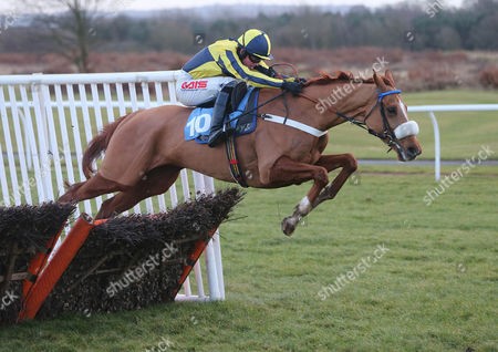 LOVELY JOB Ridden by Jason Maguire wins at Newcastle