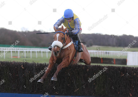 UP AND GO Ridden by Jason Maguire wins at Newcastle