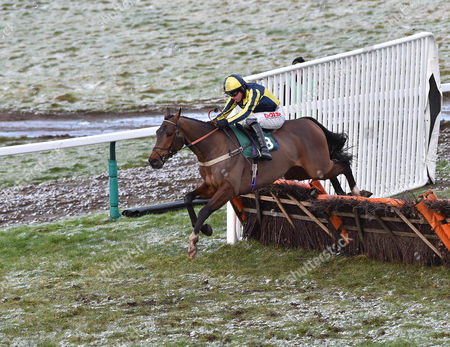 Assirem (Jason Maguire) takes the last before going on to win The William Hill-On Your Mobile Handicap Hurdle Race at Towcester Racecourse. 29.1.15. Pic: HUgh Routledge