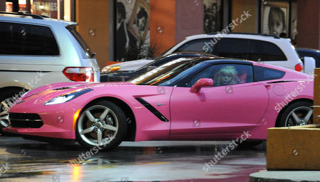 Editorial image of Angelyne out and about, Los Angeles, America - 30 Jan 2015