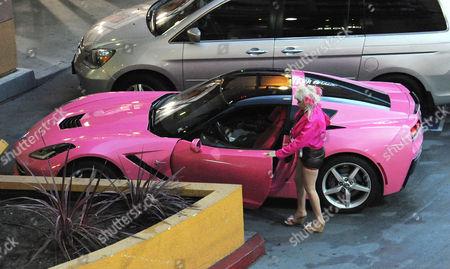 Angelyne in her pink corvette sportscar