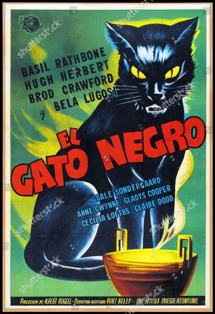 (El Gato Negro) Spanish film poster for the Black Cat a 1941 film based on the short story by Edgar Allan Poe. The comedy/horror film was directed by Albert S. Rogell, starring Basil Rathbone and featuring supporting performances by Bela Lugosi and Alan Ladd.