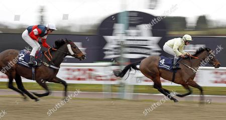 Editorial photo of Horse Racing - 13 Feb 2015