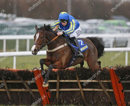 BALMUSETTE and James Reveley Win the BetBright Cheltenham Festival Fund Mares´ Novices´ Hurdle (Listed Race) DONCASTER RACECOURSE