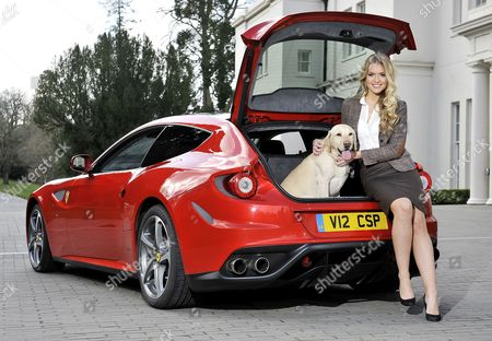 Launch Of The New Ferrari Ff. A Super Car With A Big Enough Boot To Carry A Dog. Pictured: Model Kirsty Heslewood With Five-year-old Labrador 'jake' And The Ferrari Ff At Coworth Park Ascot Berks.