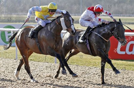 SCORELINE (right, Josh Doyle) beats YAIR HILL (left) in The Unibet Offer Daily Jockey Trainer Specials Classified Claiming Stakes Wolverhampton
