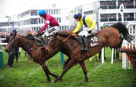 Editorial picture of Horse Racing - 13 Mar 2015