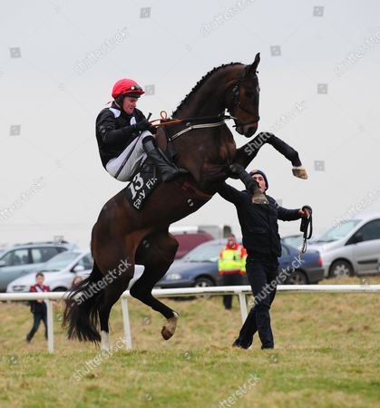 Belclare PTP SUE OSCAR Gives Barry Brown a hard time on their way to the start for the 5&6-Y-O Mares Maiden Race, Before fallong at the 6th fence all were OK after.
