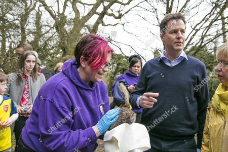 Nick Clegg and Lorely Burt meeting a rescued hedgehog
